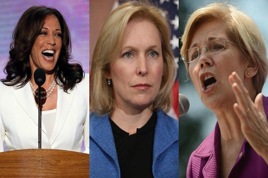 خیز دمکرات های ضدترامپ برای انتخابات ریاست جمهوری آمریکا