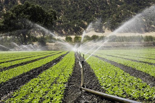 افتتاح 14 طرح تجهیز اراضی به سیستم آبیاری نوین در فارسان